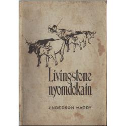 Livingstone nyomdokain
