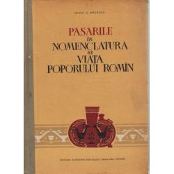 Pasarile in nomenclatura si viata poprului romin