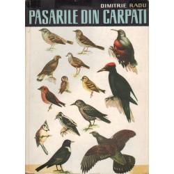 Pásárile din Carpati