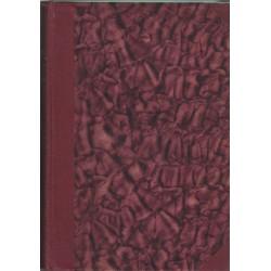 Illem-kódex papok és szerzetesek számára I. kötet