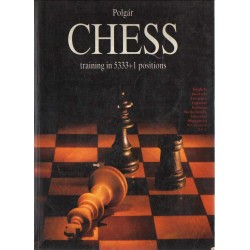 Chess training in 5333+1 positions