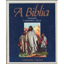 A Názáreti Jézus (A Biblia felfedezése)