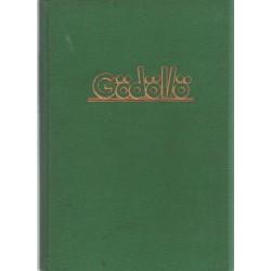 Gödöllö- Die Fahrt der 500 Schweizer Pfadfinder zum IV. Jamboree in Gödöllö (Ungarn) 1933